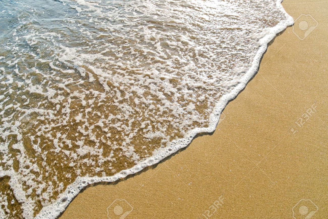 foamy wave gliding towards the golden beach Stock Photo - 5202693
