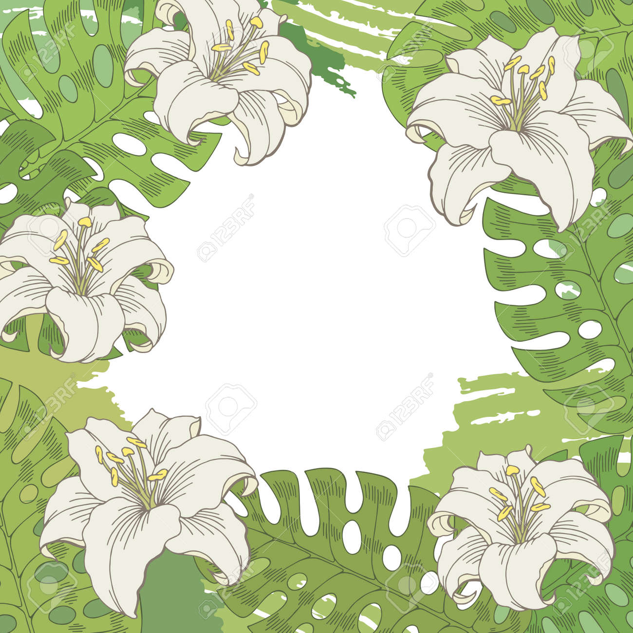 Lily Flower Graphic White Green Color Sketch Background Illustration ...