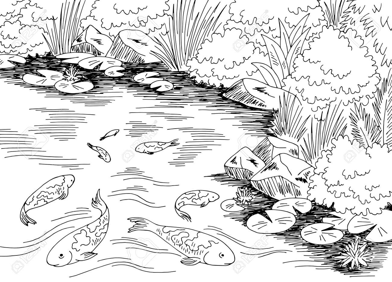 Pond koi carp fish graphic black white landscape sketch illustration vector - 140615329