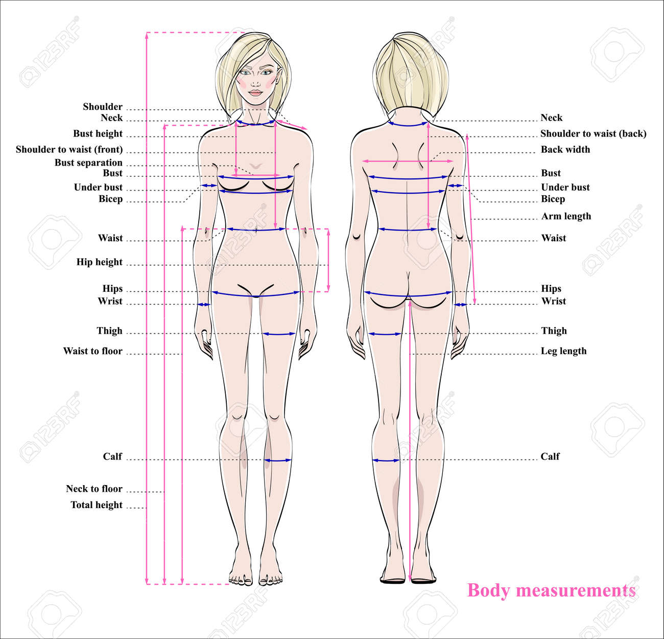 Woman body measurement chart. Scheme for measurement human body for sewing clothes. Female figure: front and back views. Vector. - 97129650