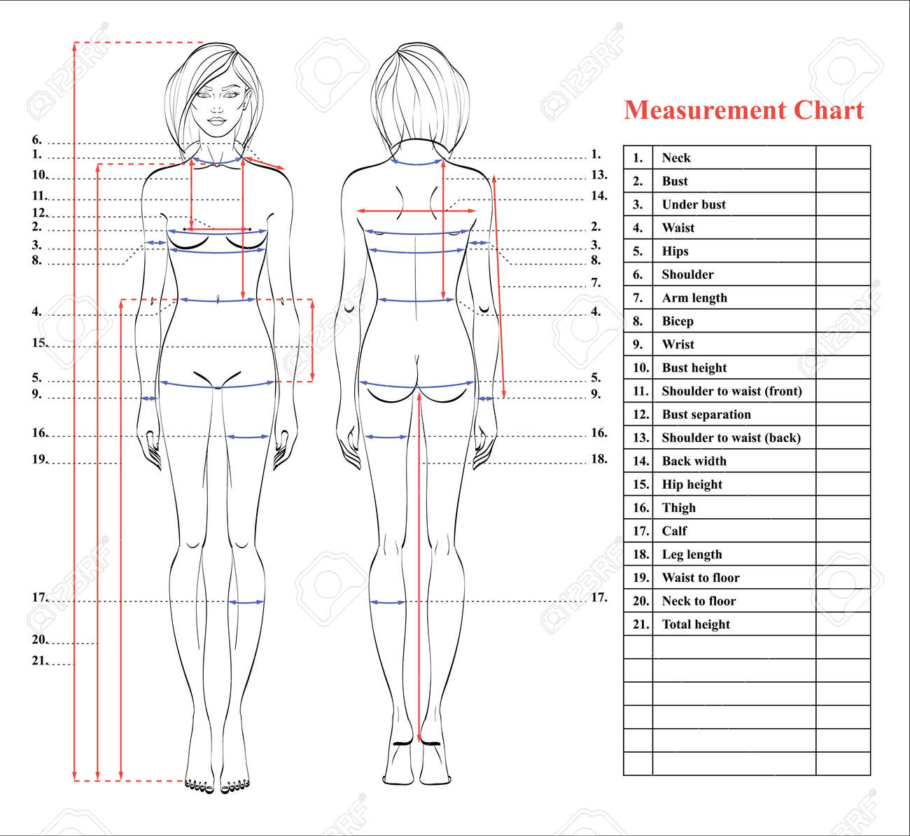 Body Measurements Diagram Of Layout - Download Wiring Diagrams •