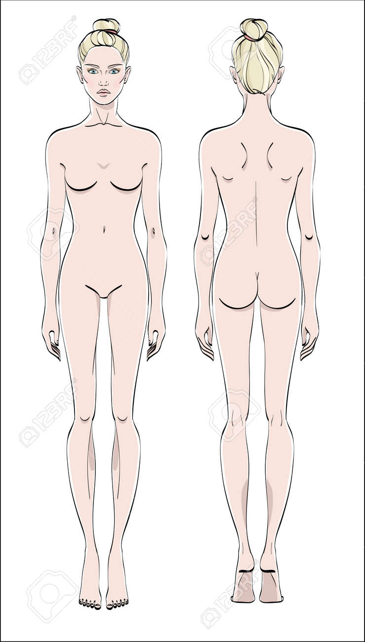 Female figure: front and back. Color vector. Human body in linear style. - 97129839