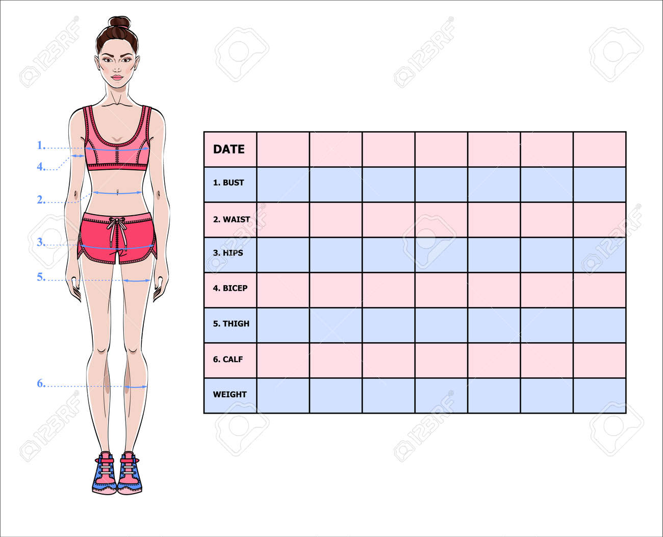 measurement chart of the body parameters for sport and diet effect tracking blank weight loss