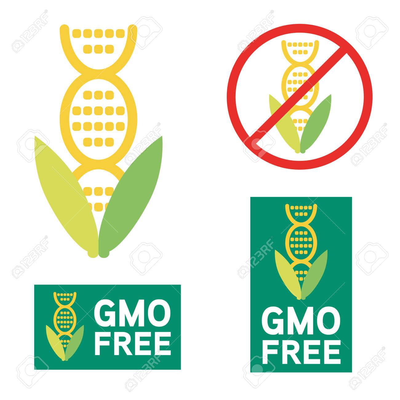 Gmo free icon symbol design non genetically modified organism gmo free icon symbol design non genetically modified organism sign with corn cob vector illustration buycottarizona Images