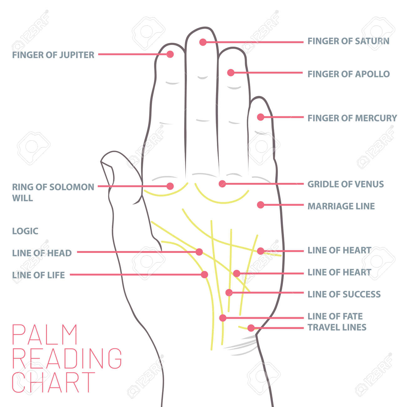Palm reading chart palmistry map of the palm s main lines royalty