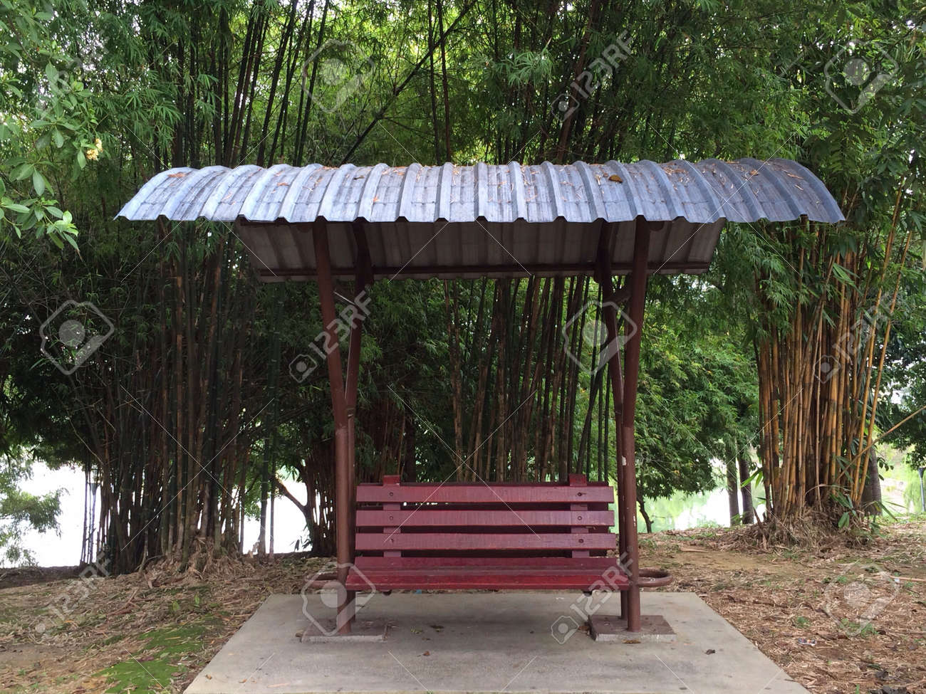 Park Bench With Bamboo In Back Stock Photo Picture And Royalty Free