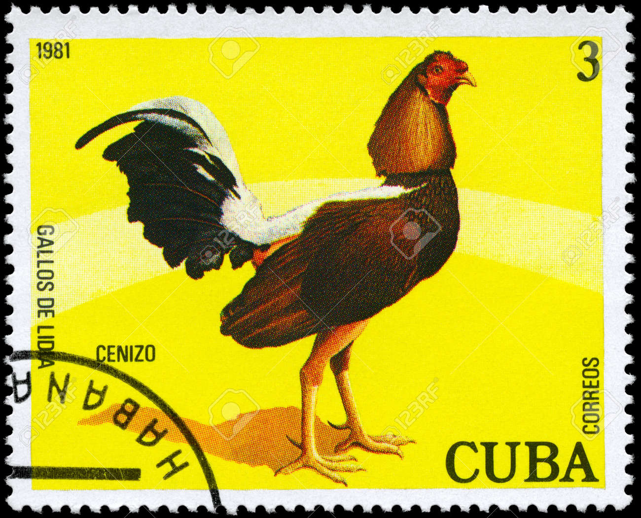 CUBA - CIRCA 1981: A Stamp shows image of a Rooster with the designation