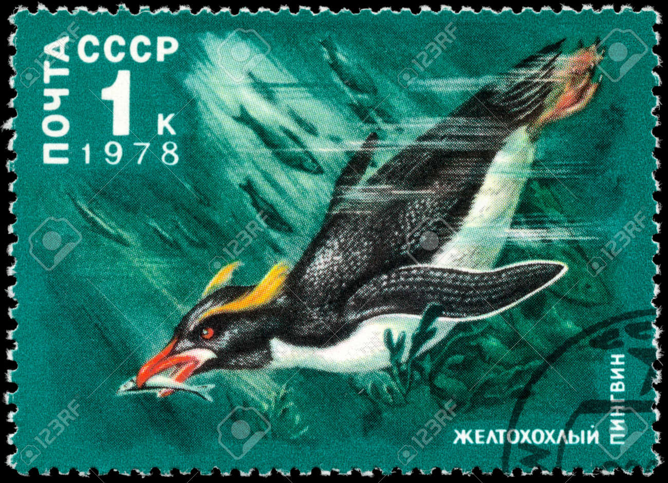 USSR - CIRCA 1978: A Stamp printed in USSR shows image of a Crested Penguin from the series