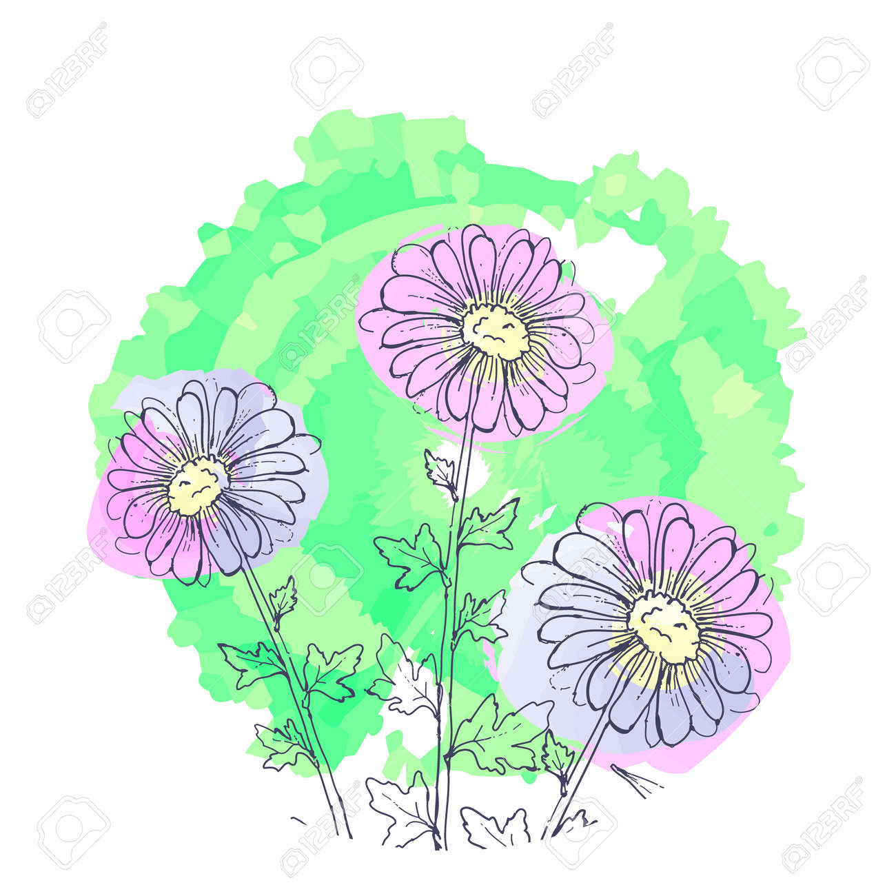Daisy Flowers Floral Set Of Ink Drawing Wild Plants Monochrome