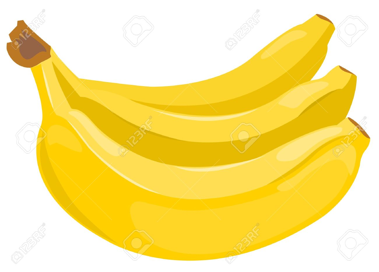 Sheaf Of Bananas Stock Vector