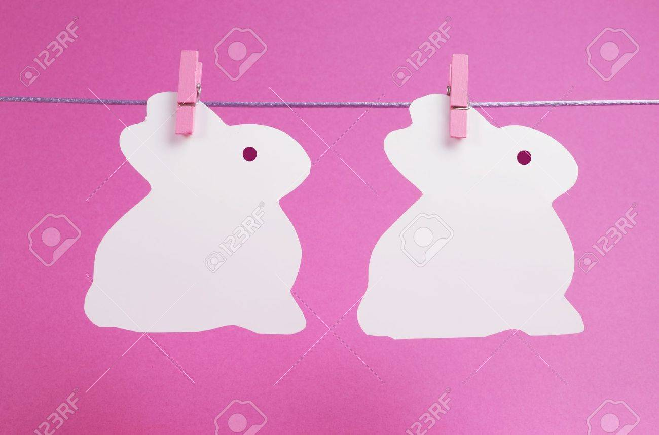 Pink theme two bunny rabbit shape Easter cards hanging from pegs on a line, with copy space for your text here Stock Photo - 17746747