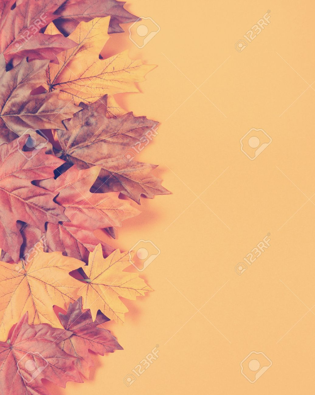 Retro Vintage Filter Autumn Leaves On Modern Trend Orange Background Stock Photo Picture And Royalty Free Image Image 31284458