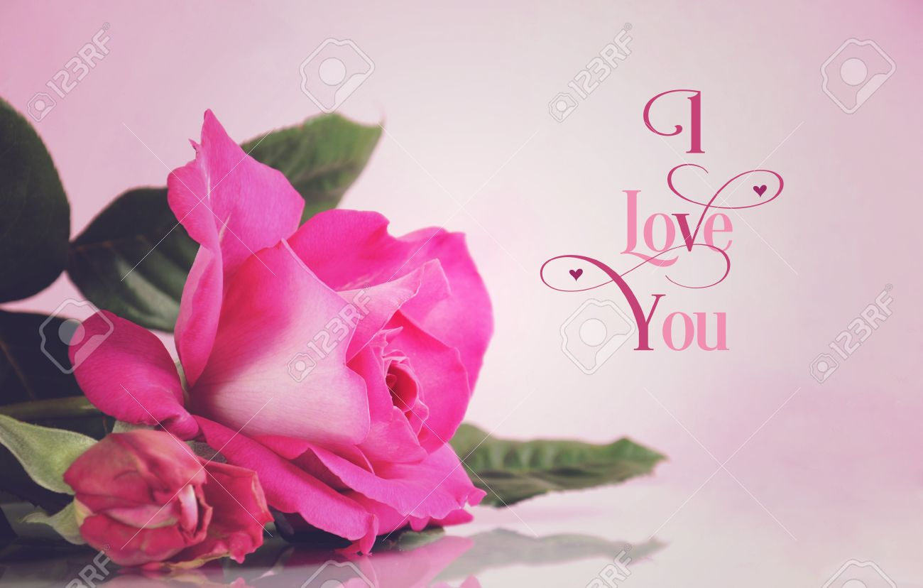Happy Valentines Day Greeting With Retro Vintage Style Pink Rose