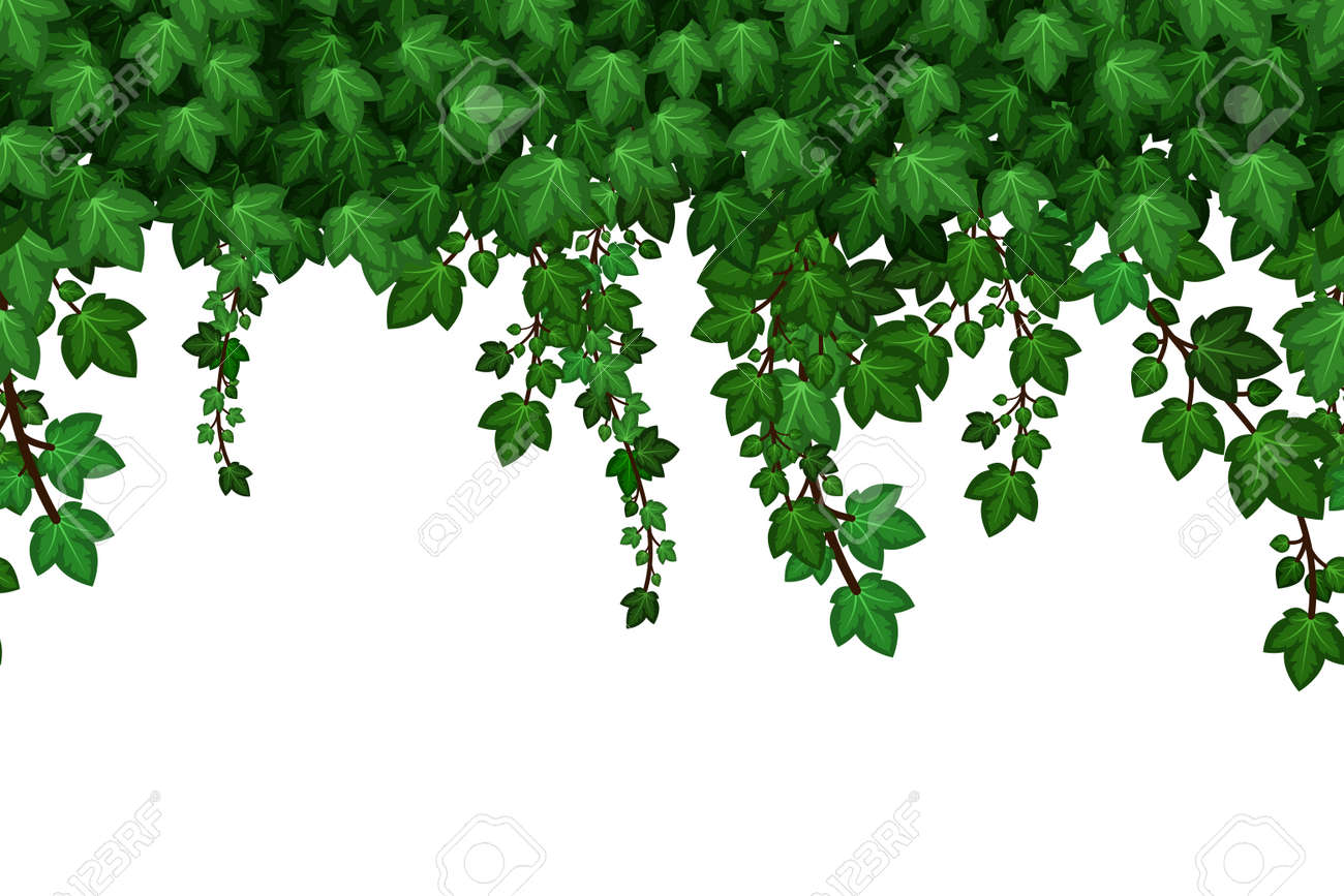Green ivyfoliage garland. Hanging ivy leaves, summer natural plant wall background. Seamless pattern. Vector illustration - 171265139