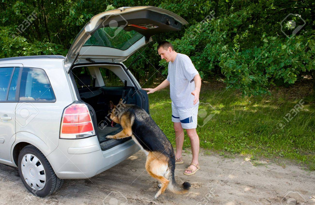 Dog getting into a car with her owner nearby Stock Photo - 4097460