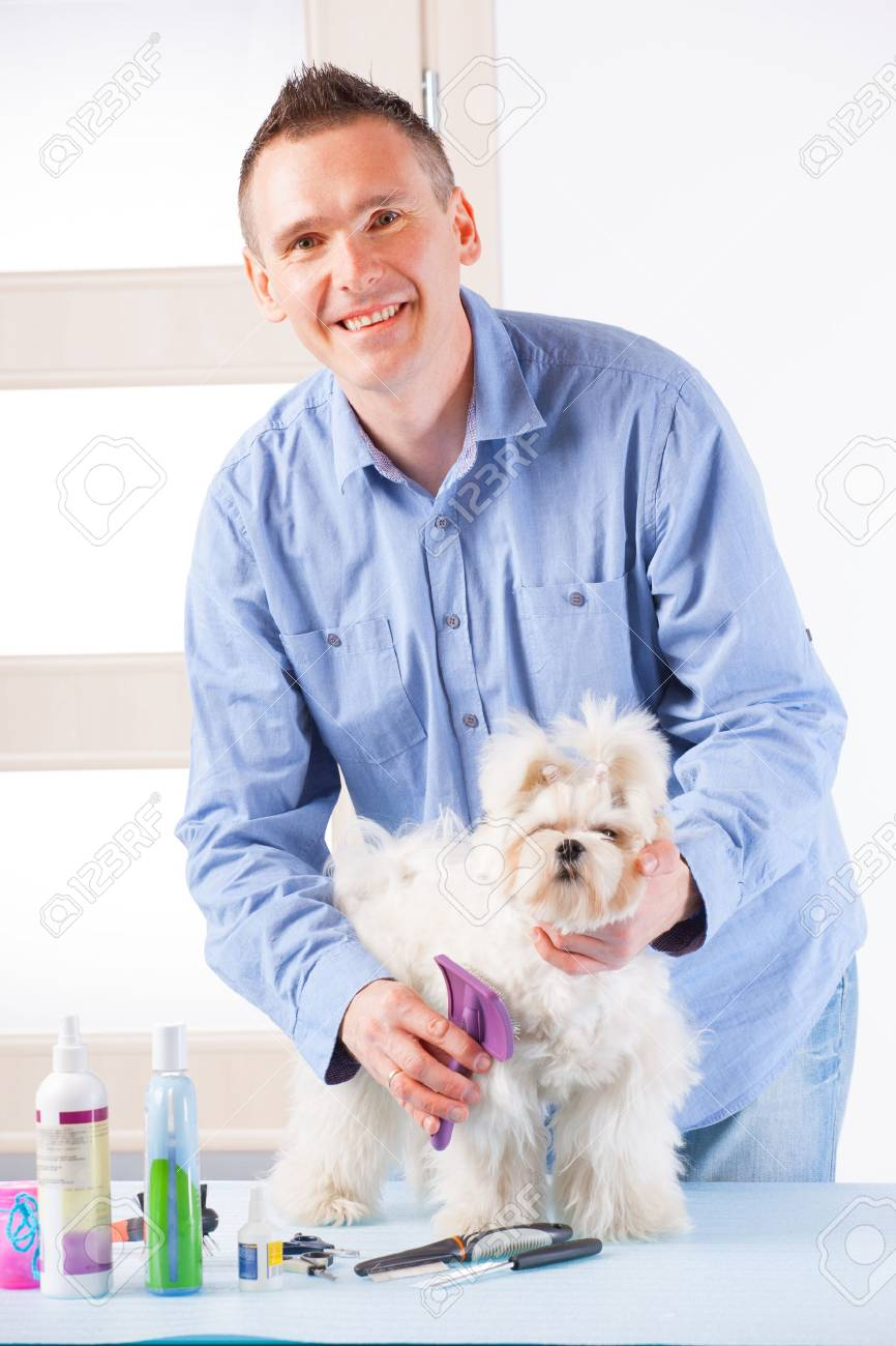Smiling man grooming a dog purebreed maltese. Stock Photo - 19339693