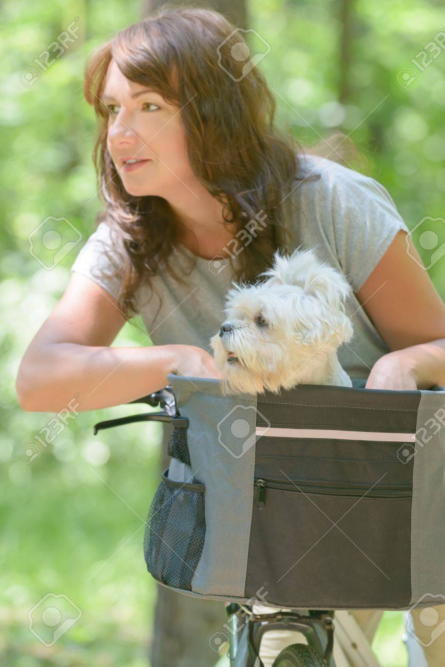 beautiful mature woman riding a bike with her pet maltese dog