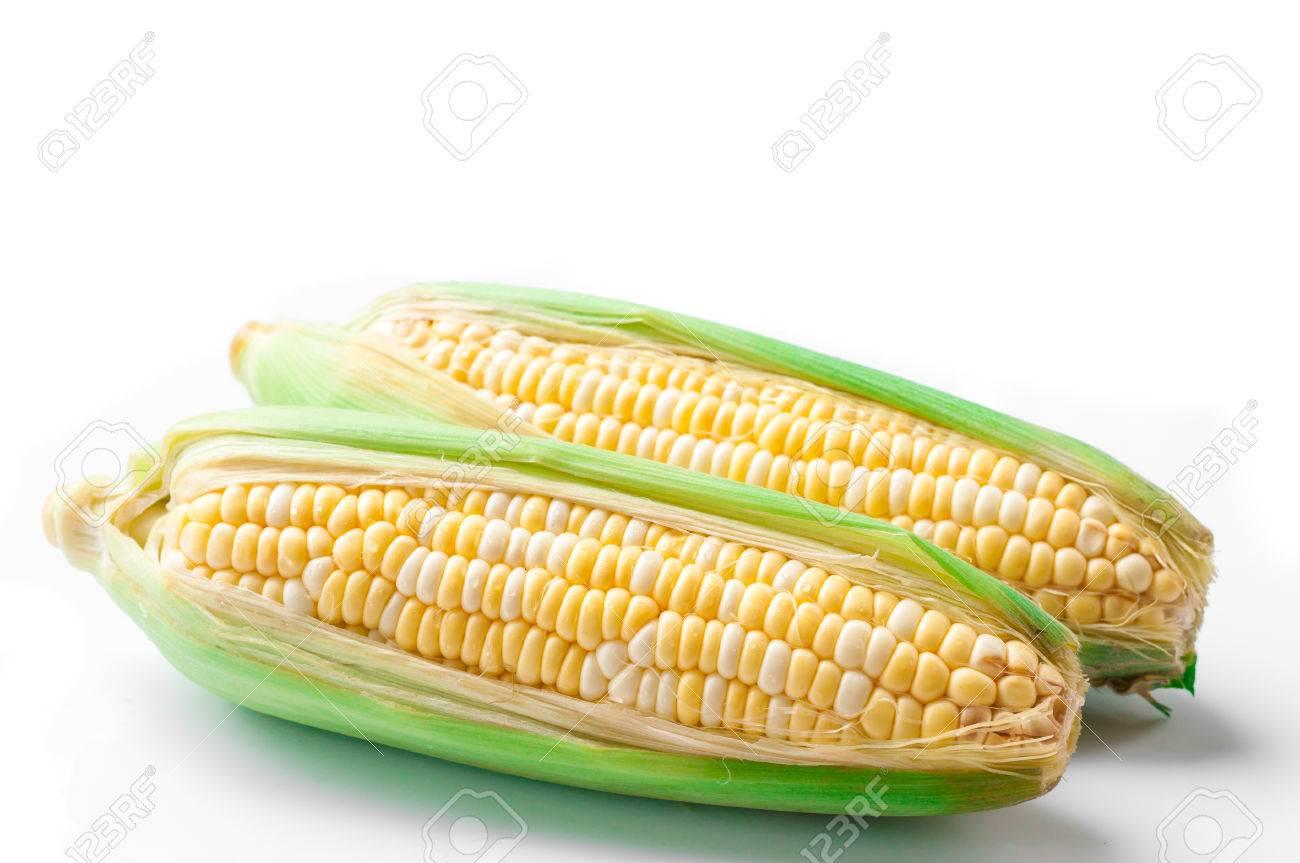 sweet corn, bi-color - 43589989