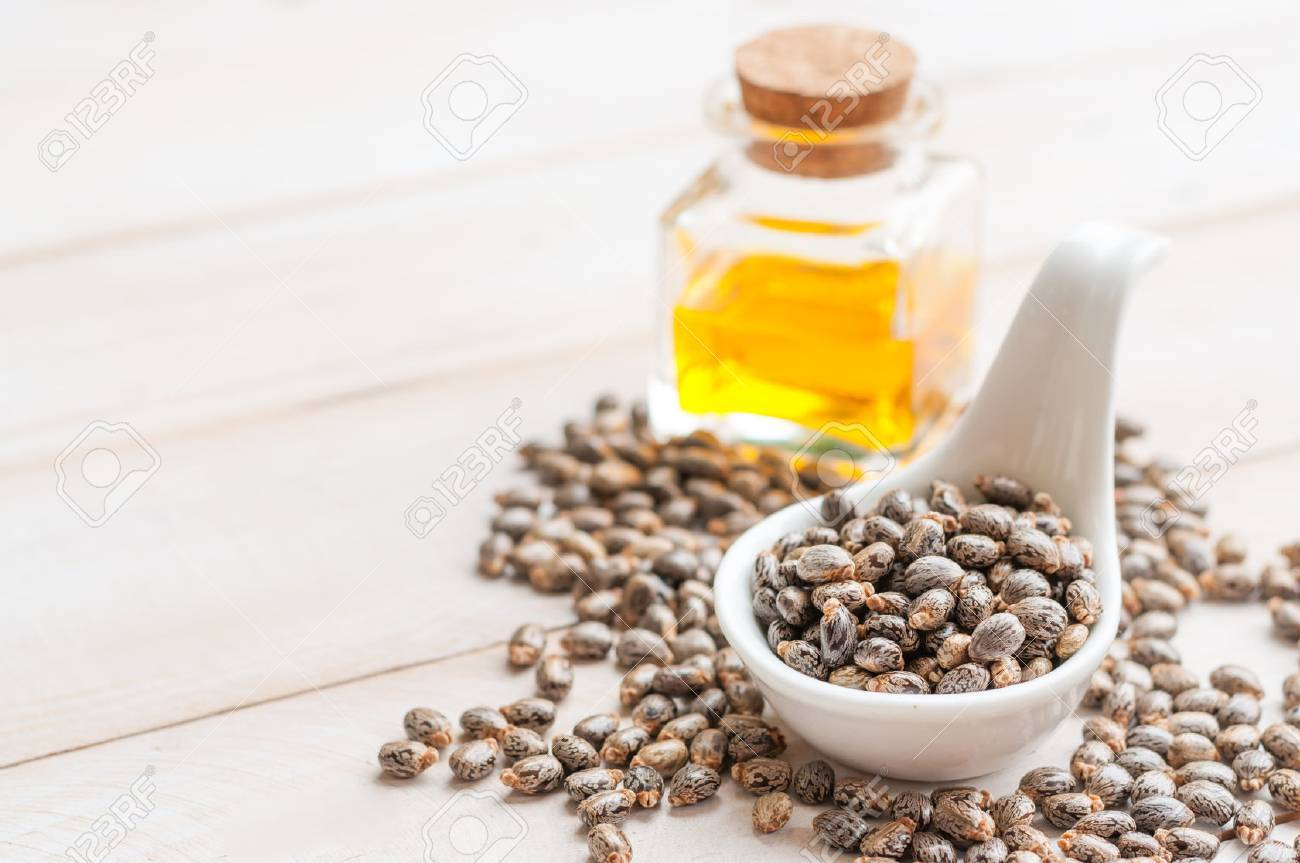 Castor oil with beans on wooden surface - 58955045