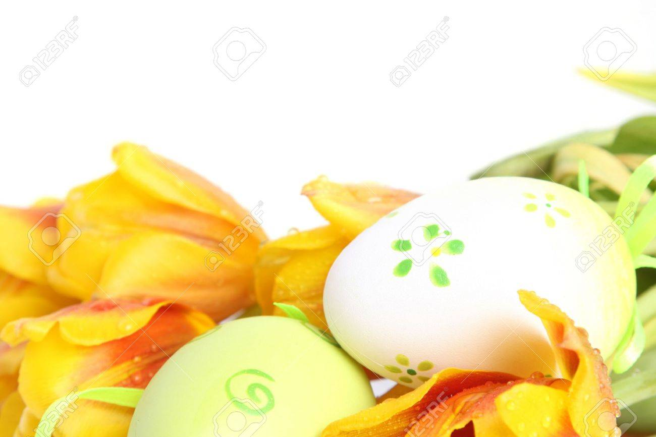 green easter eggs with orange tulips Stock Photo - 2702482