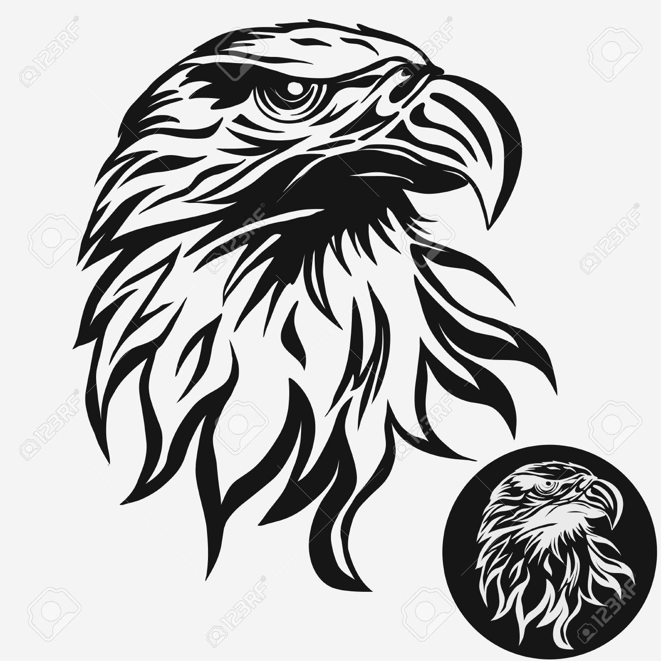 Eagle head logo Template, Hawk mascot graphic, Portrait of a bald eagle. Vector - 69140021