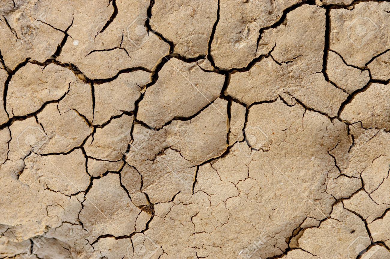 Detail view of dried clay and mud surface stock photo picture and detail view of dried clay and mud surface stock photo 5206892 sciox Images