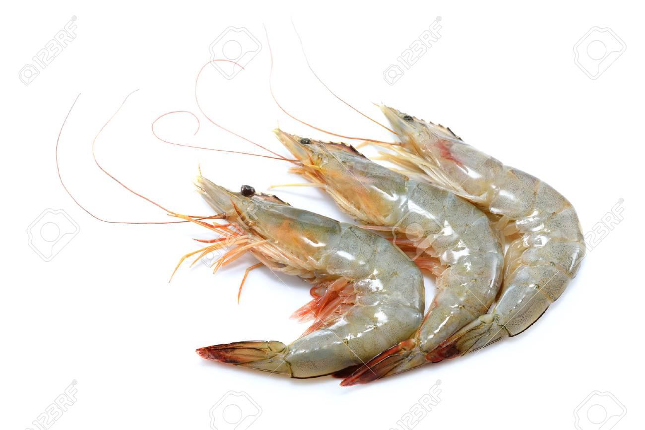 Fresh shrimps,prawns isolated on white background - 68780461