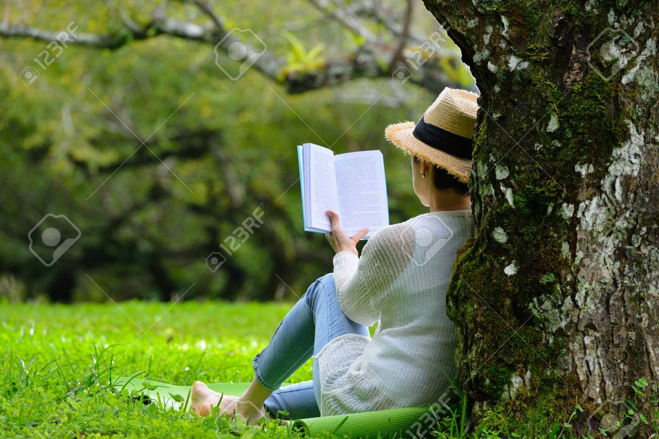 Middle aged woman sitting under a tree reading a book in the park - 68663801