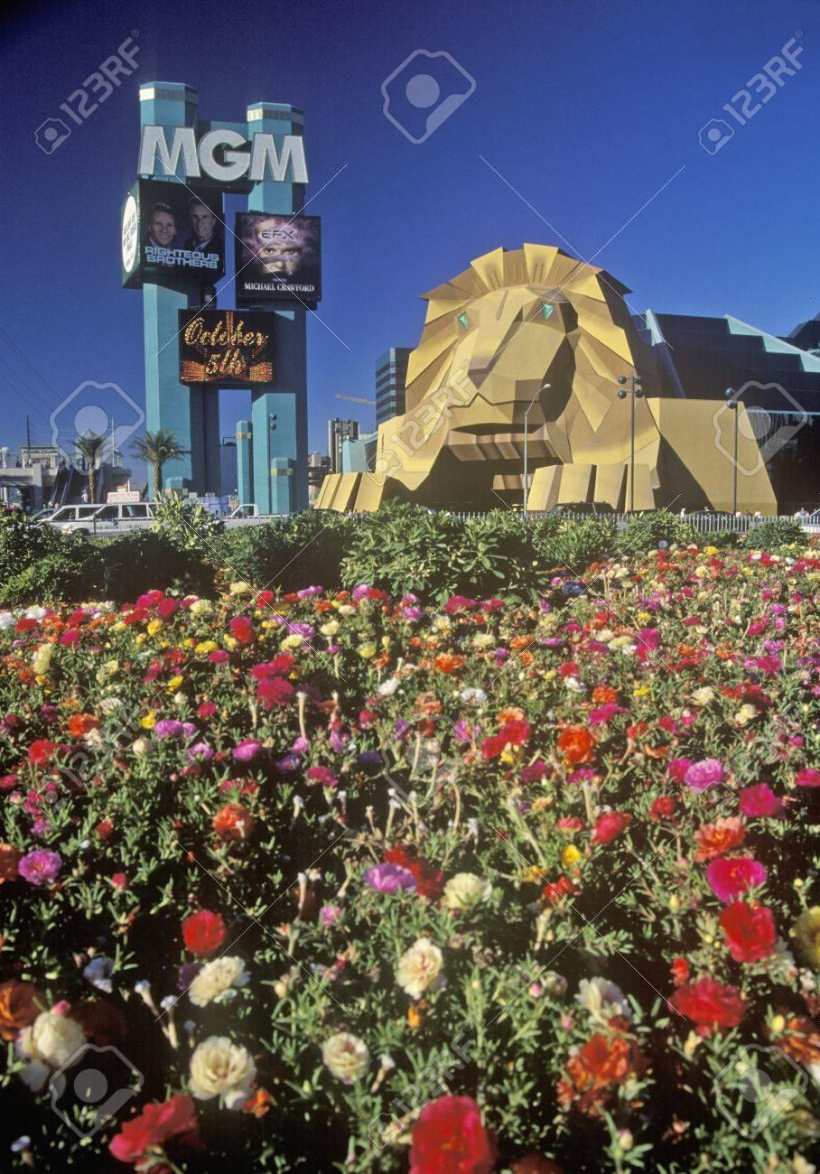 Replica Des Lowen Am Eingang Des Mgm Grand Hotel Las Vegas Nv Lizenzfreie Fotos Bilder Und Stock Fotografie Image 20515190