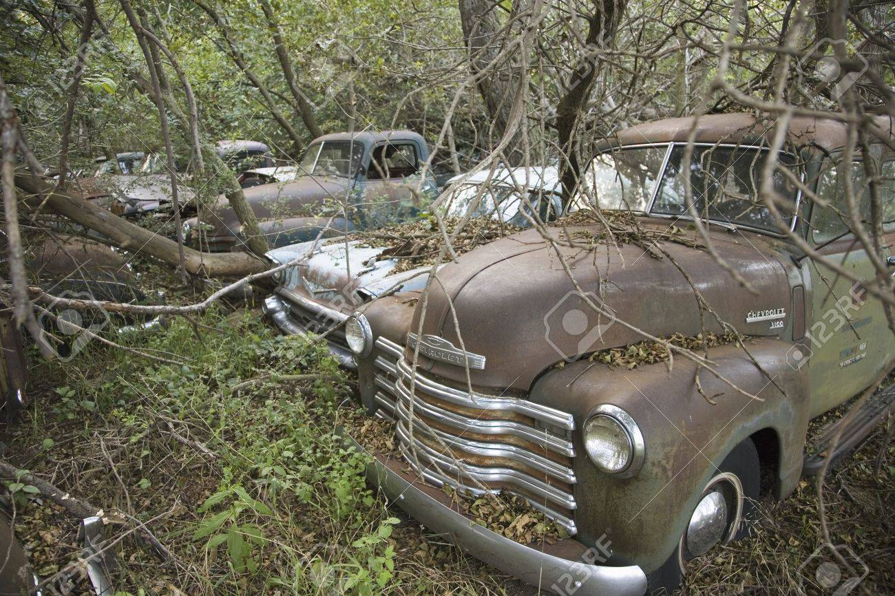 New Chevrolets And 1960 S Cars Never Before Run Rotting In Farm Stock Photo Picture And Royalty Free Image Image 20511663