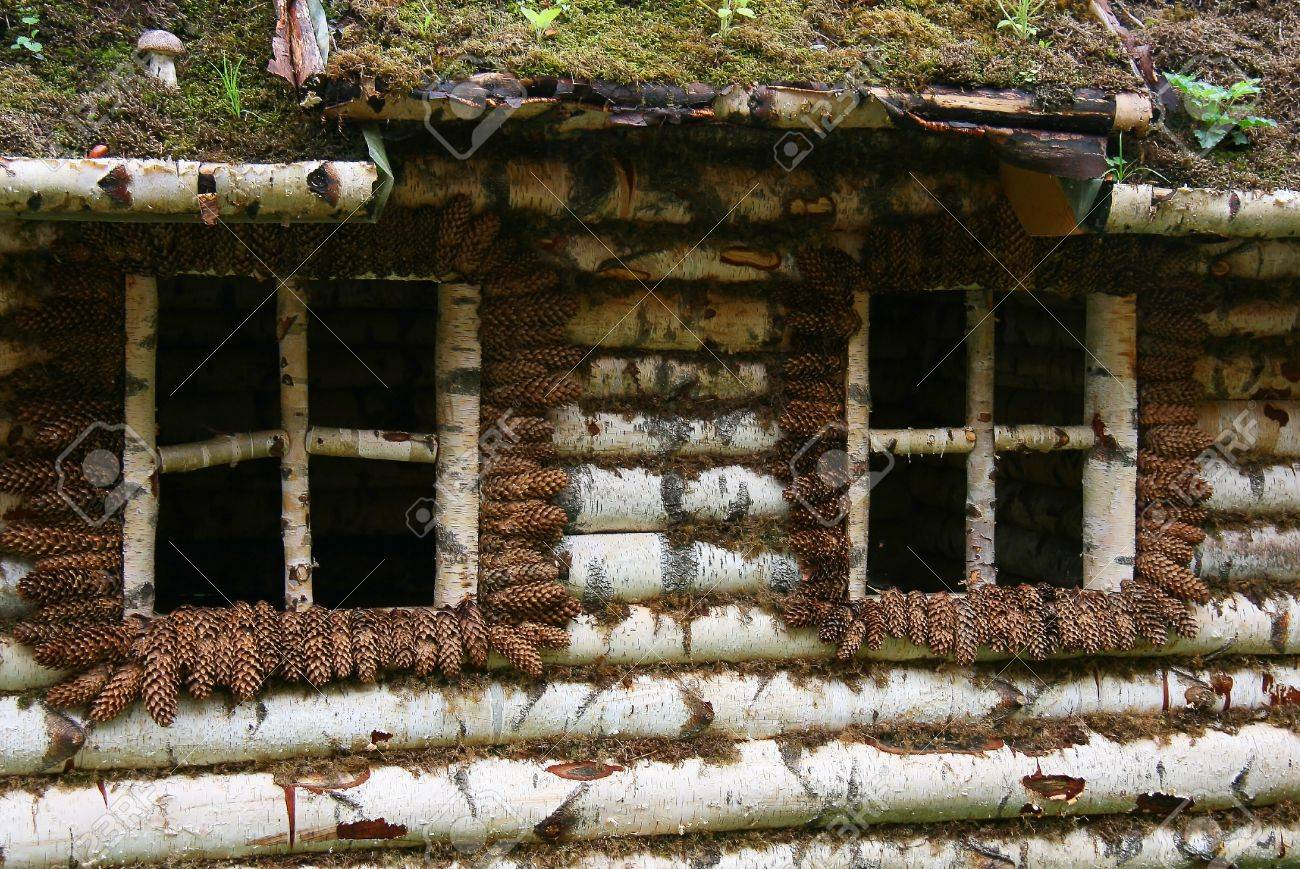 Birchen Log House Wall With Glassless Window Frame And Earth Roof Stock  Photo   15681036