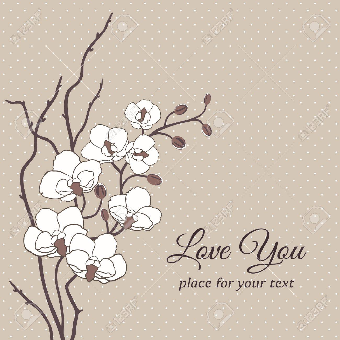 Romantic floral vector card with orchid flowers Stock Vector - 17312654