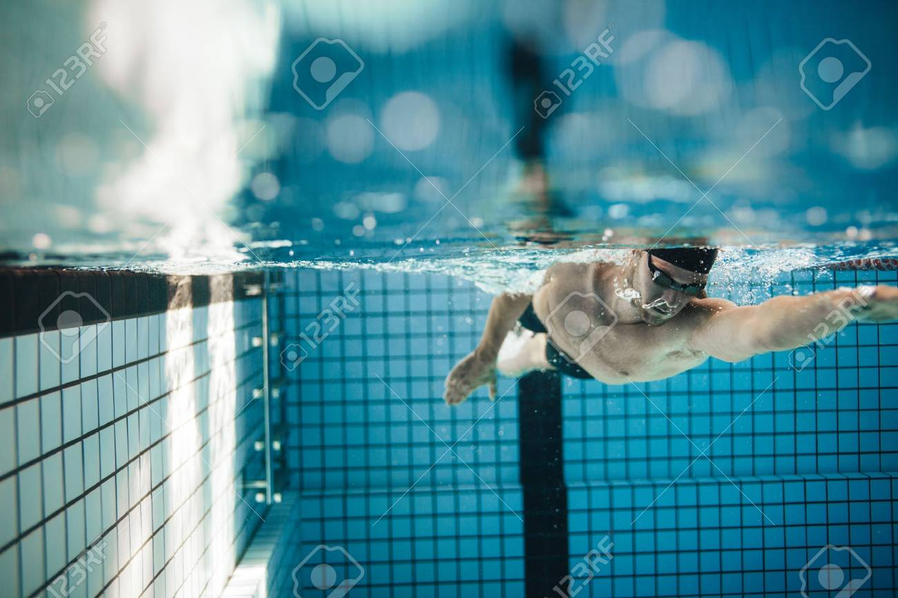 Fit young male swimmer training in the pool. Pro male swimmer..