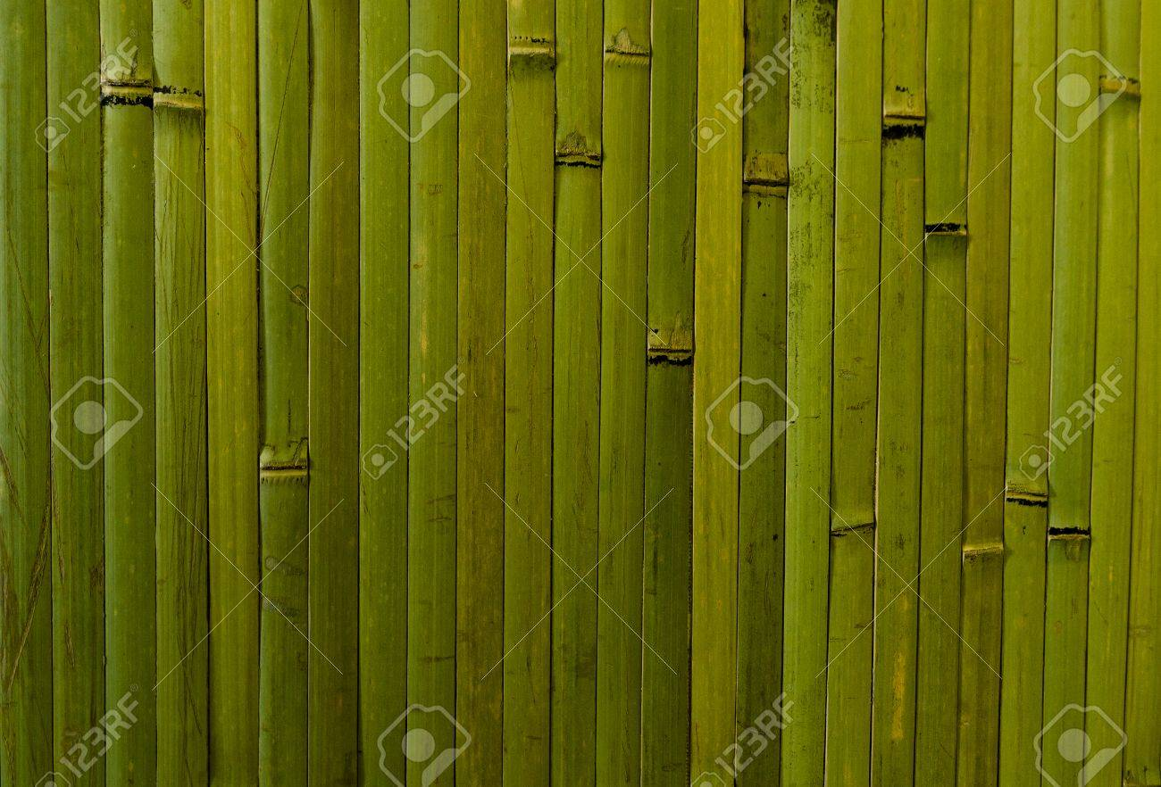 Bamboo Wall Covering. Green Vertical Forms Stock Photo   59857536