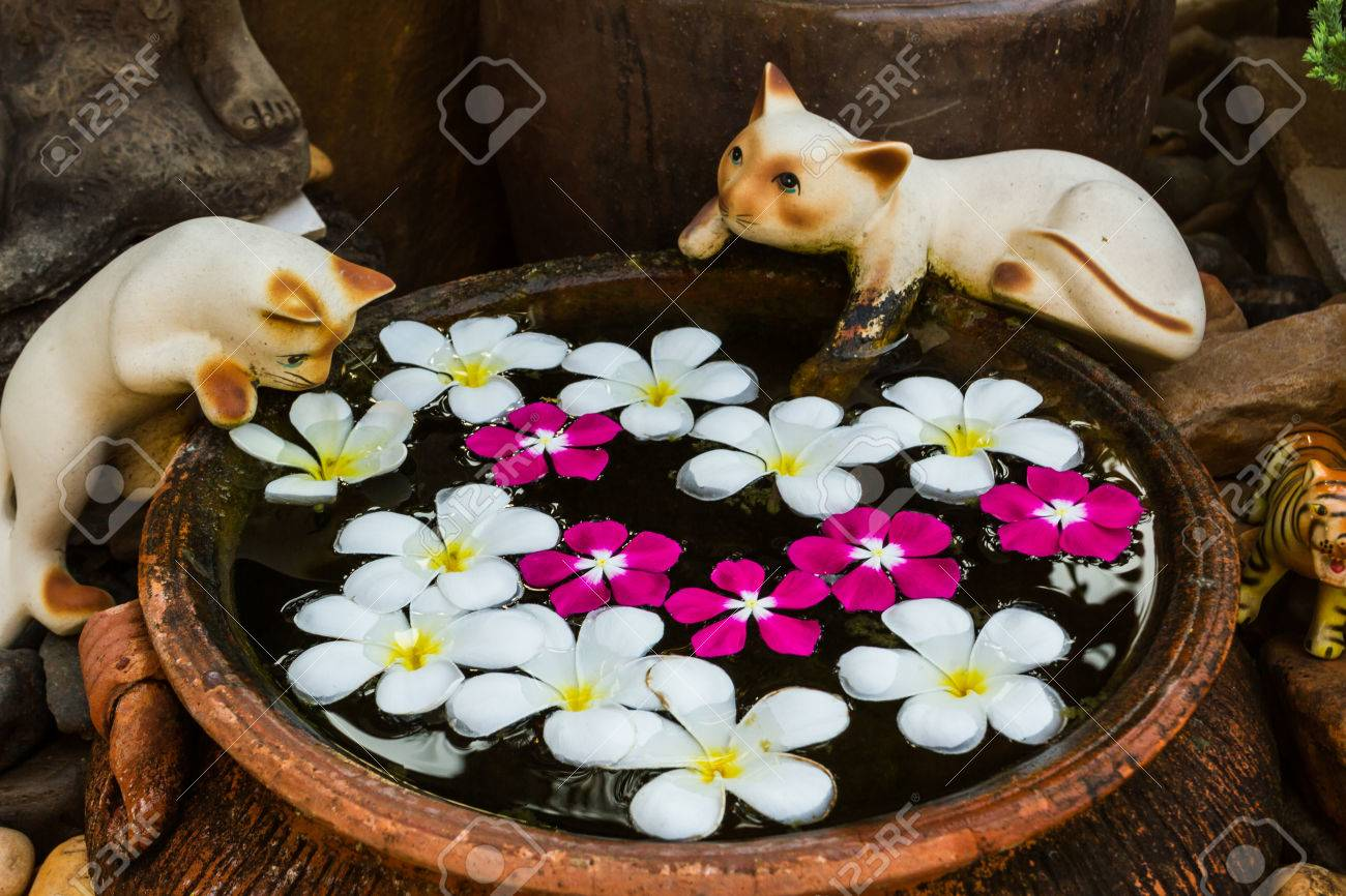 foto de archivo gatos de cermica en el borde de una piscina de peces para decorar el jardn