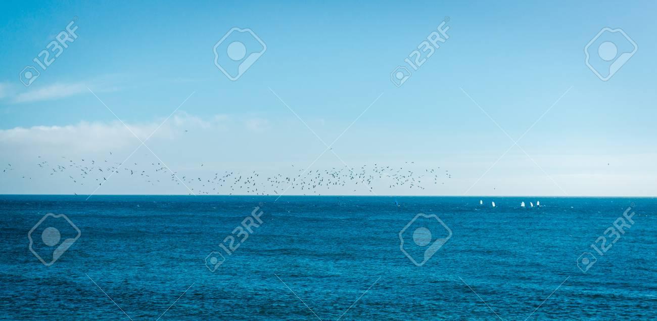 Immagini Stock Sagome Di Uccelli Sul Mare Blu E Sfondo Del Cielo