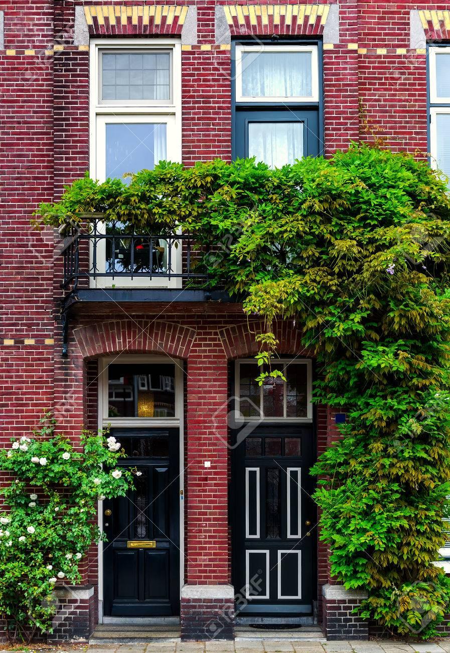 れんが造りの建物は、緑のツタに覆われました。オランダ