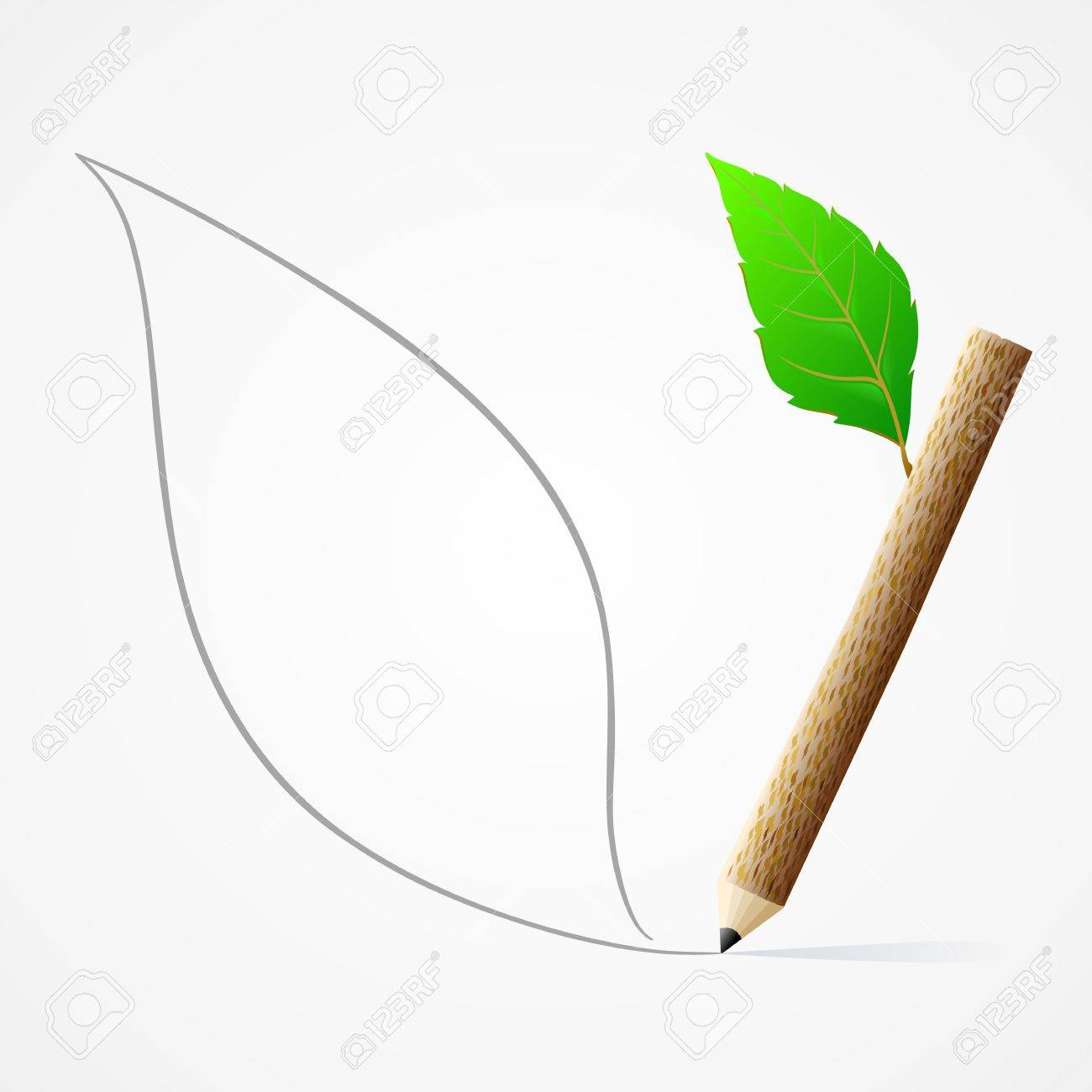 Pencil drawing leaf stock vector 16823890
