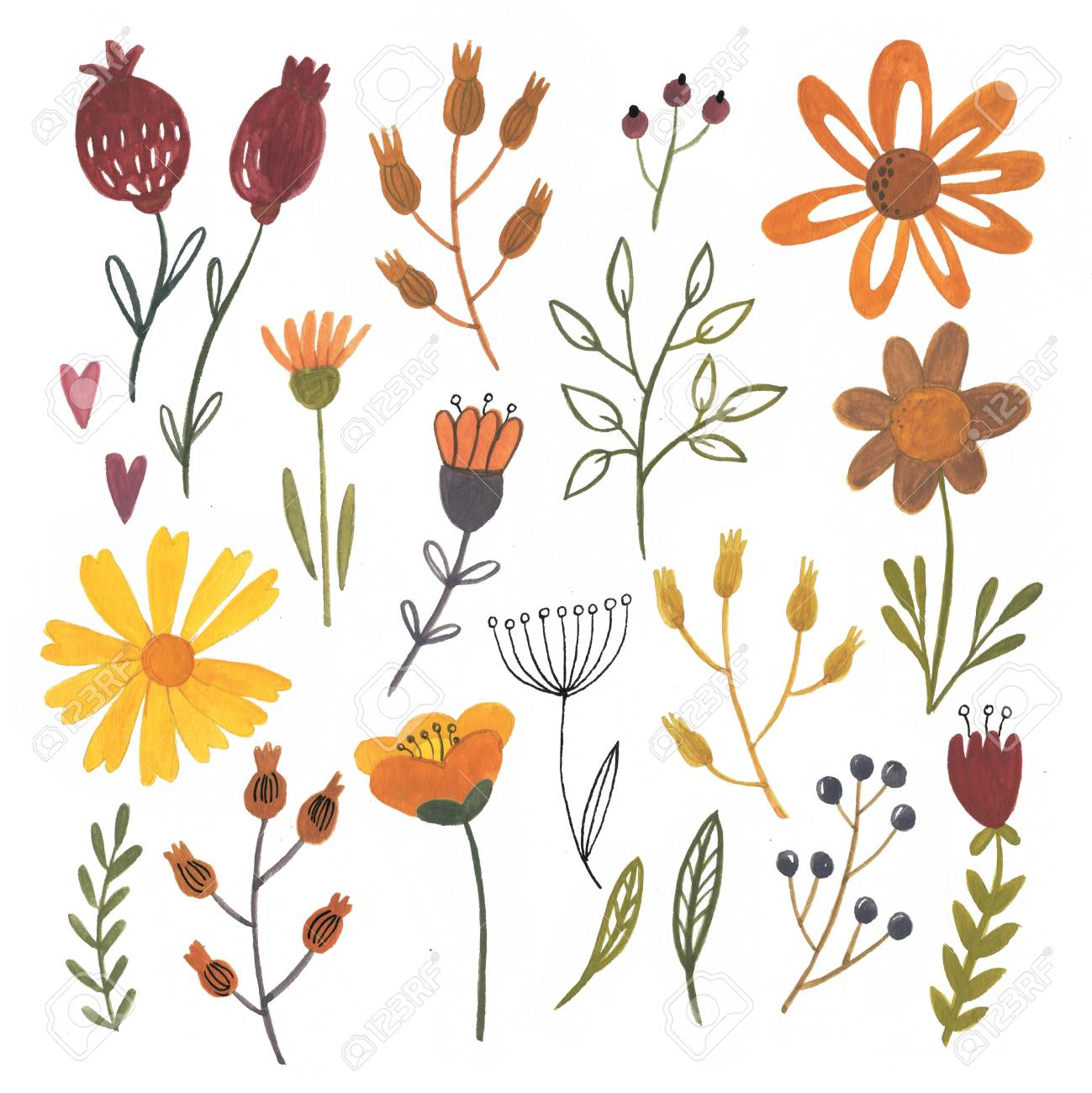Gouache flowers and leaves - autentic hand drawn elements - 115501207