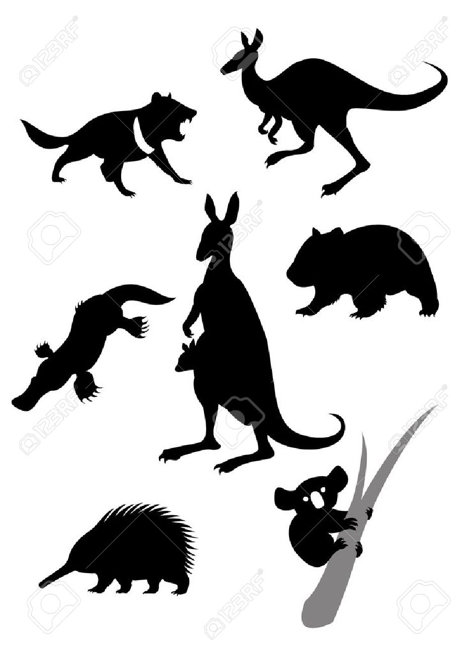 Vector image of silhouettes of australian animals Stock Vector - 17976923