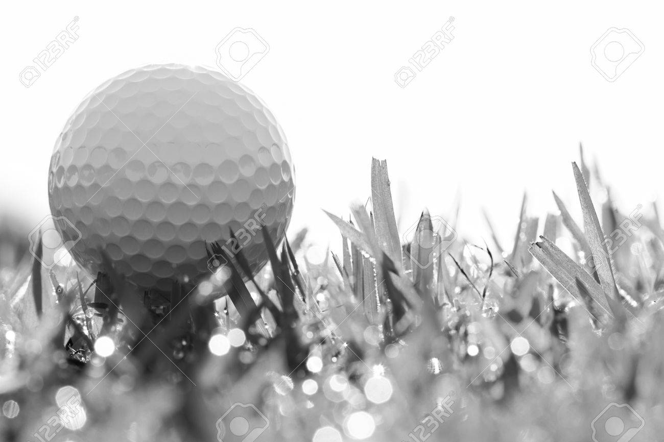 Black And White Photo Of Golf Ball On Grass With Bokeh Stock Photo Picture And Royalty Free Image Image 40238299