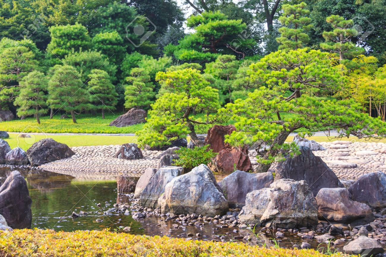 Ninomaru garden, a traditional Japanese Zen garden in summer season with Bonsai trees, stones