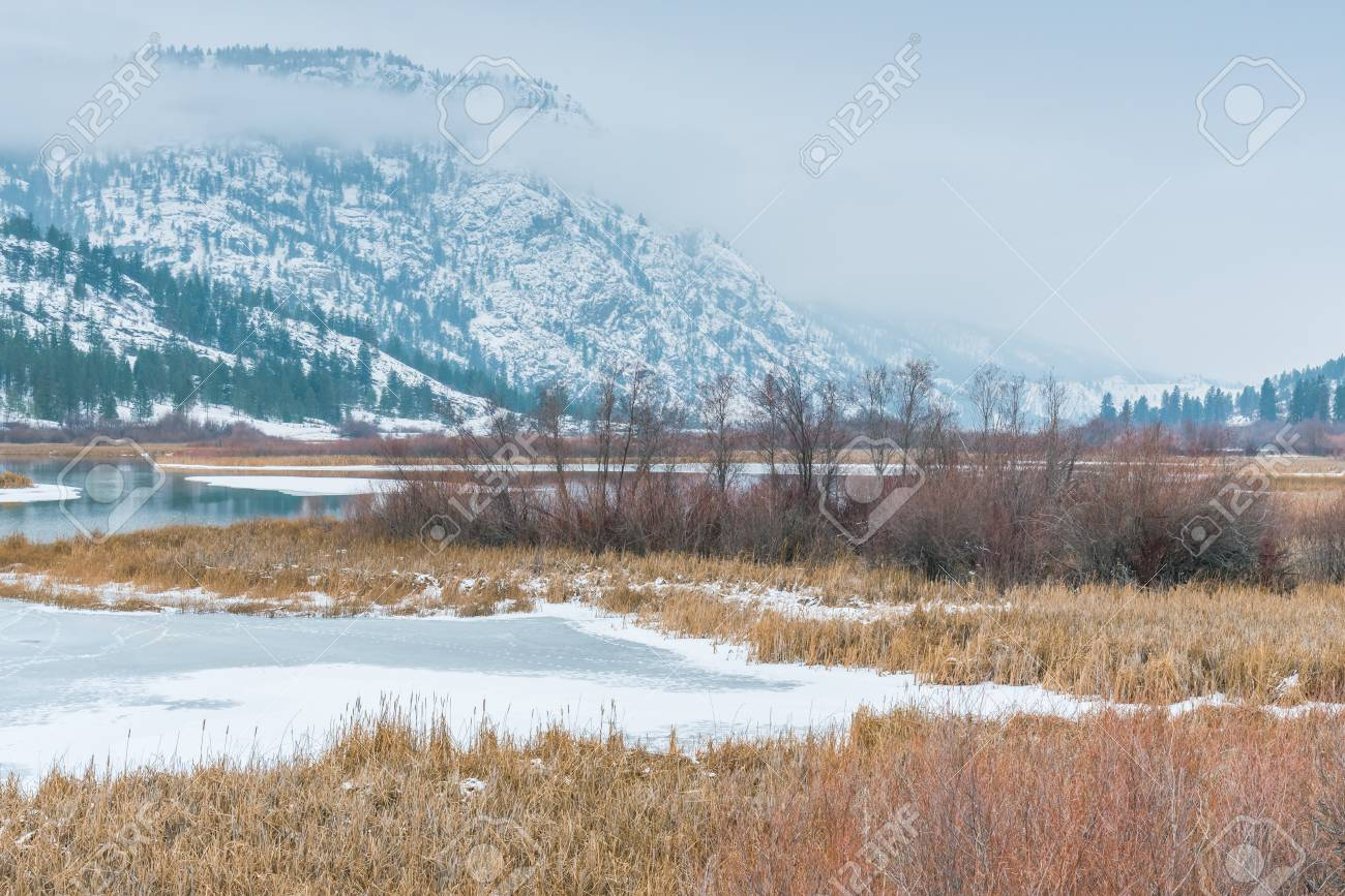 Protected wetland habitat at Vaseux Lake in winter, with snow