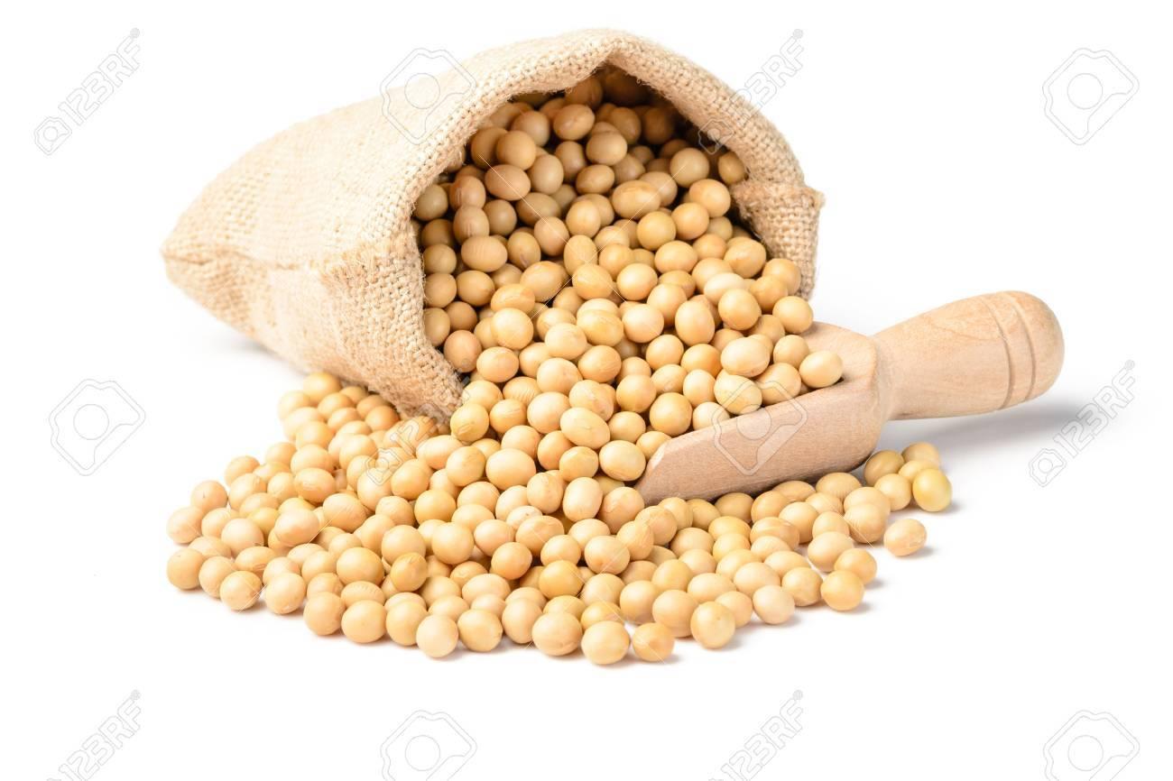 soybean - 39551077