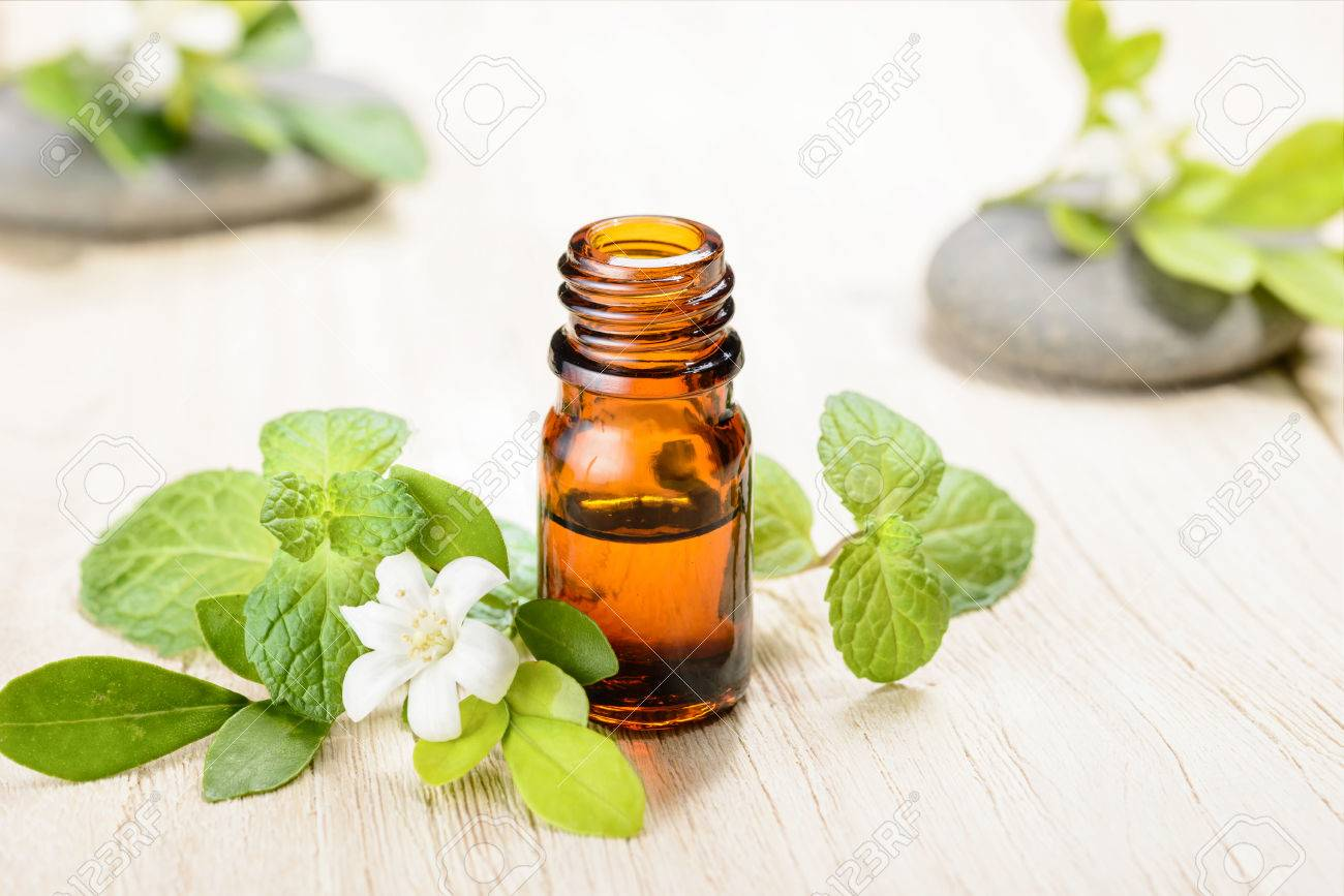 fresh mint essential oil on wooden board - 52433682