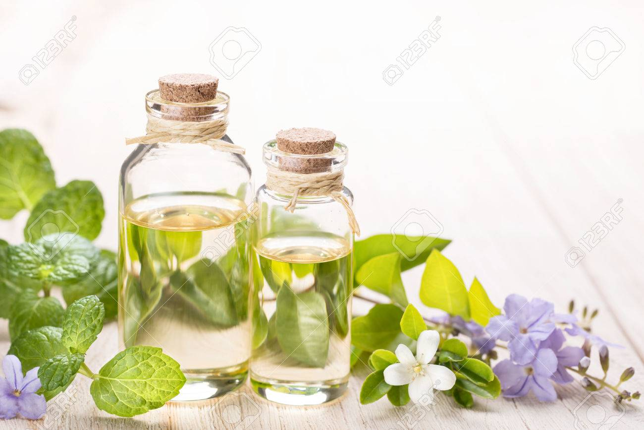 fresh mint essential oil and flowers - 52433349