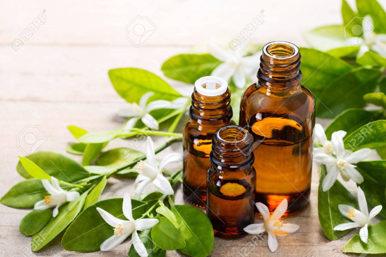 neroli essential oil in the brown glass bottle, with fresh white neroli flower and green leaves. - 73793174