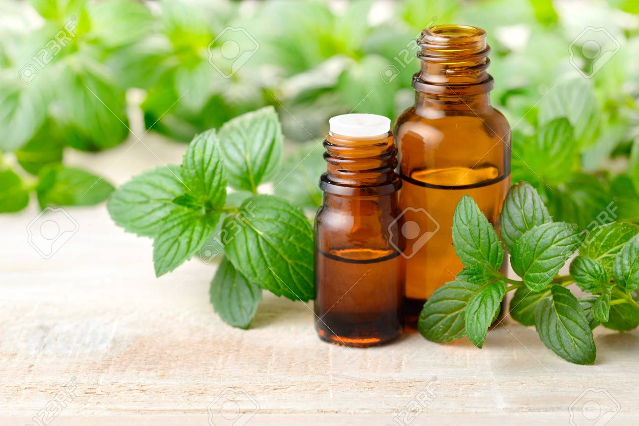 fresh peppermint leaves and Peppermint essential oil in the amber glass bottle - 93196464