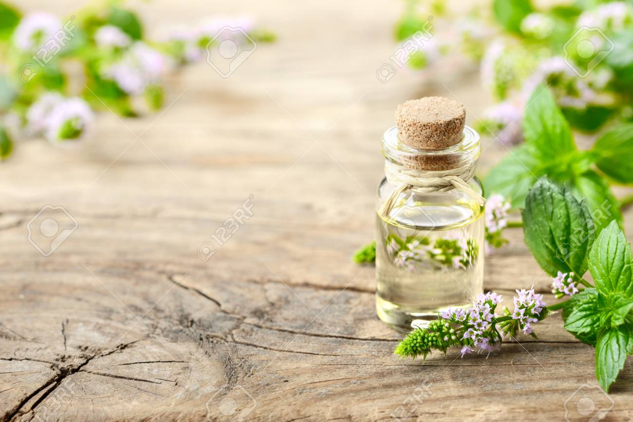 Peppermint essential oil and peppermint flowers on the wooden table - 94979267