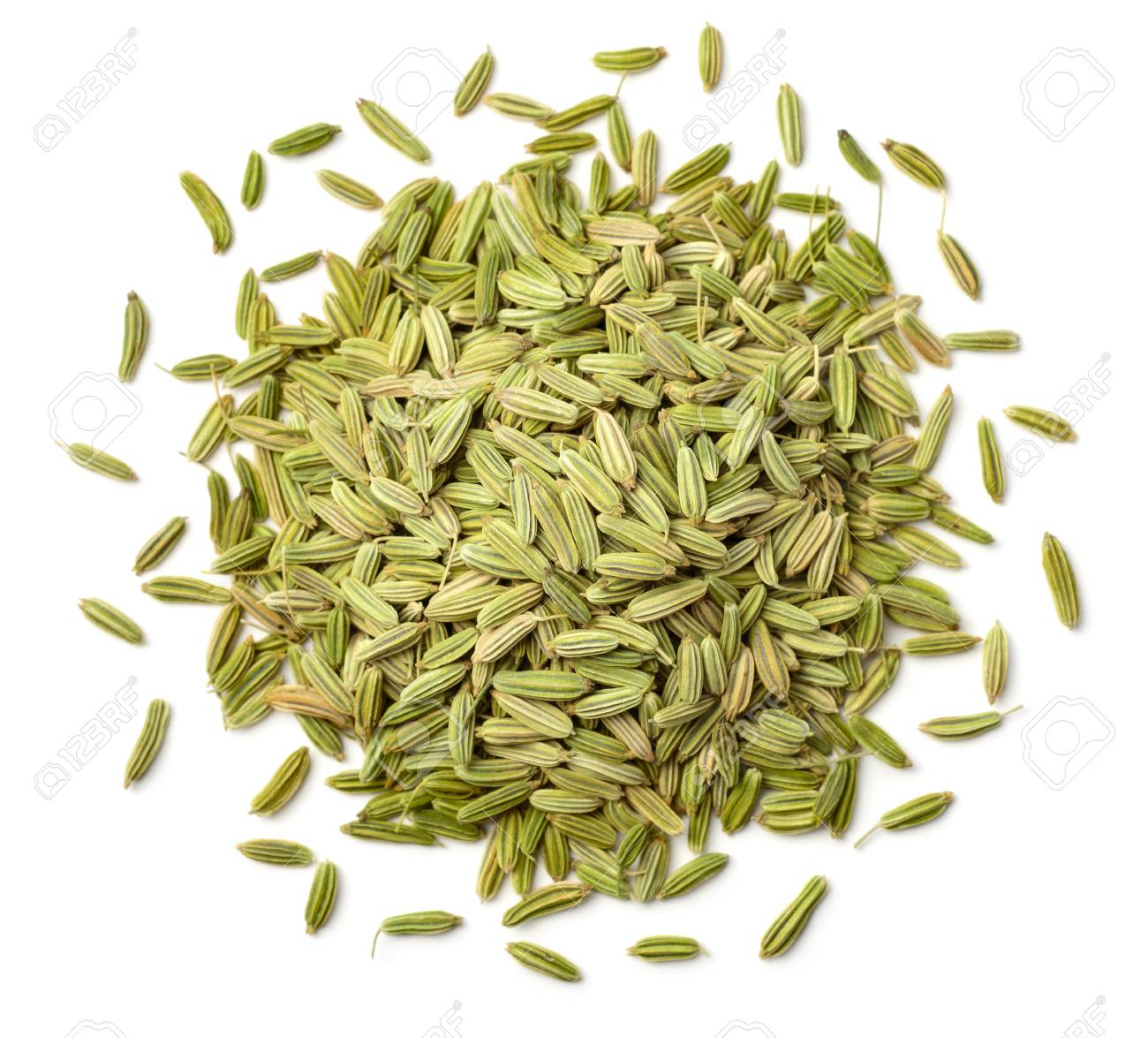 dried fennel seeds isolated on white - 97687794